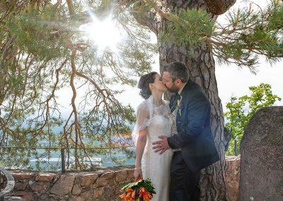 Brautpaar küsst sich unter Baum im Sonnenschein
